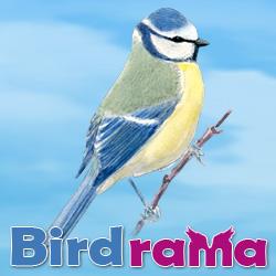 Birdrama
