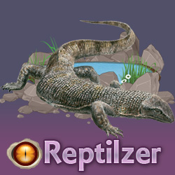 Make a link to Reptilzer