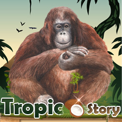Make a link to Tropicstory