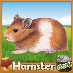 Make a link to HamsterStory