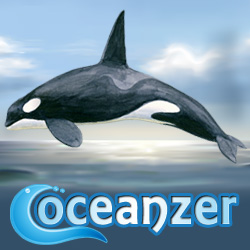 Make a link to Oceanzer